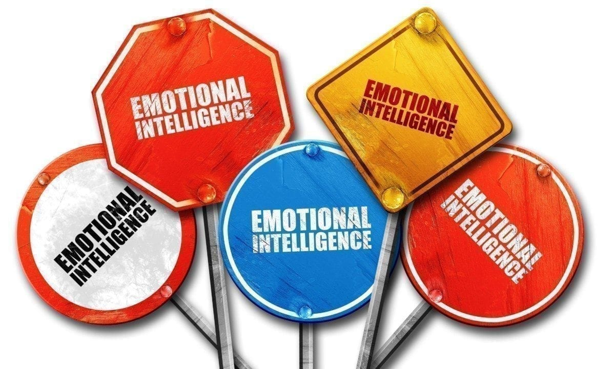 Emotional intelligence Leadership Coaching with Kinetic Insights